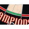 Мишень для дартса Winmau Champions choice