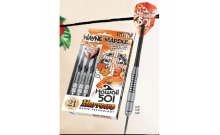 Дротики Harrows Wayne Mardle Hawaii 501. Chromed brass steeltip 25g