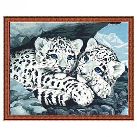 Раскраска по номерам Снежные леопарды (30х40), Color Kit CE049