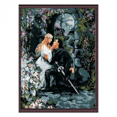 Раскраска по номерам Тайное свидание (40х50), Color Kit CG135