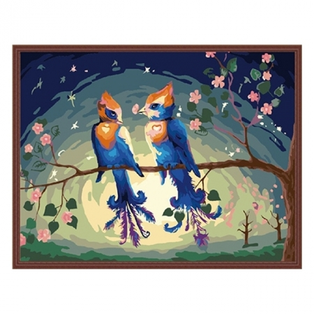 Раскраска по номерам Райские птицы (40х50), Color Kit CG156