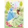 Пазл Trefl - Принцессы и лягушка. 100 pcs (16180)
