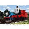Пазл Trefl - Два локомотива. 60 pcs (17200)
