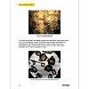 Набор для опытов с микроскопом Levenhuk K50 (арт. 13461)