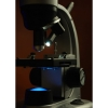 Микроскоп Levenhuk 50L NG (арт. 24600)