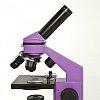 Микроскоп Levenhuk Rainbow 2L NG Amethyst\Аметист (арт. 24601)
