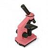 Изображение 6 - Микроскоп Levenhuk Rainbow 2L NG Rose\Роза (24606)