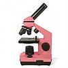 Микроскоп Levenhuk Rainbow 2L NG Rose\Роза (арт. 24606)
