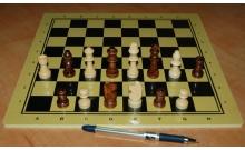 Шахматы маленькие до 39 см