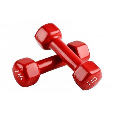 Гантели для фитнеса с виниловым покрытием Радуга (2x2кг) TA-0001-2-R (2шт, красный)
