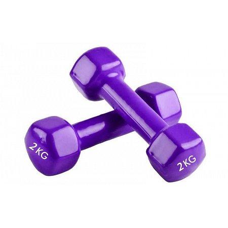 Гантели для фитнеса с виниловым покрытием Радуга (2x2кг) TA-0001-2-V (2шт, фиолетовый)