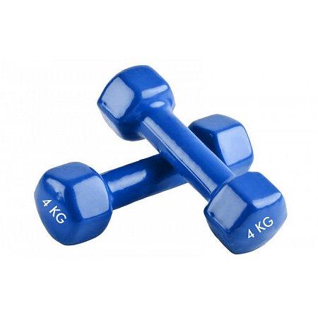 Гантели для фитнеса с виниловым покрытием Радуга (2x4кг) TA-0001-4-B (2шт, синий)