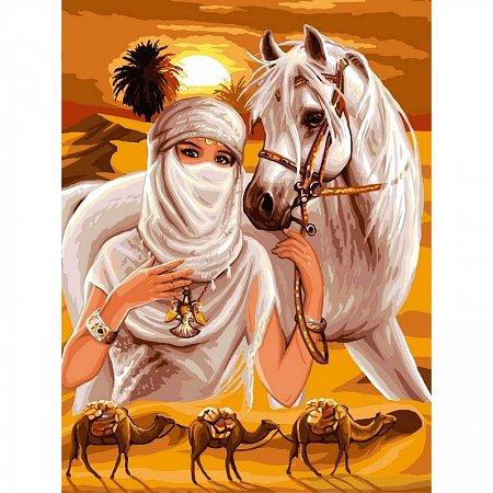 Картина по номерам Принцесса и пустыня 30x40см, Babylon VK009