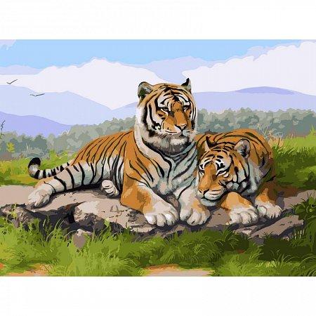 Картина по номерам Тигриное семейство 30x40см, Babylon VK032
