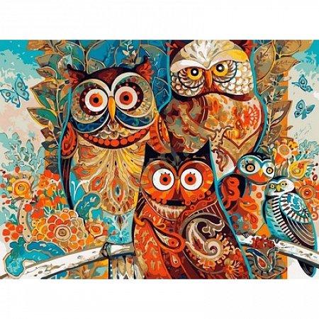 Картина по номерам Три совы 40х50см, Babylon VP611
