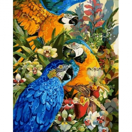 Картина по номерам Тропические попугаи 40х50см, Babylon VP617