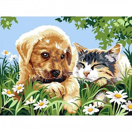 Картина по номерам Верные друзья 30x40см, Babylon VK112