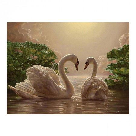 Пара лебедей (любовь), серия Животные и птицы, рисование по номерам, 40 х 50 см, Идейка, Пара лебедей (KH301)