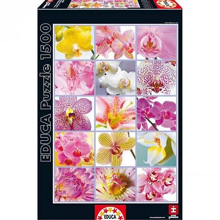 Пазл EDUCA Цветочный коллаж 1500 элементов (EDU-16302)