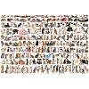 Пазл Eurographics Мир кошек, 2000 элементов (8220-0580)