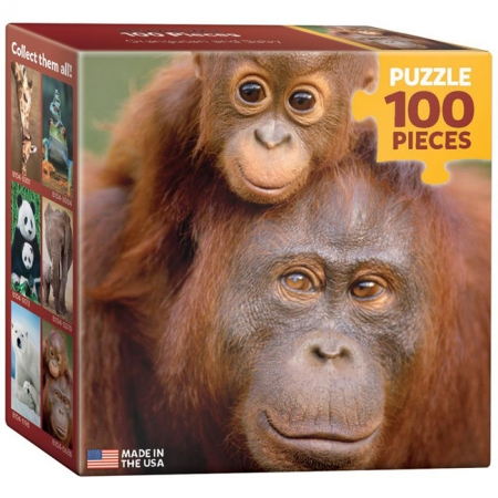 Пазл Eurographics Орангутанг с детенышем, 100 элементов (8104-0638)