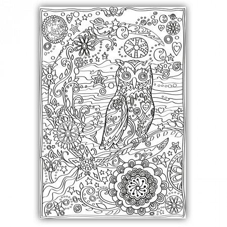 Плакат-раскраска Сова от ОKroshka (84 x 60 см)