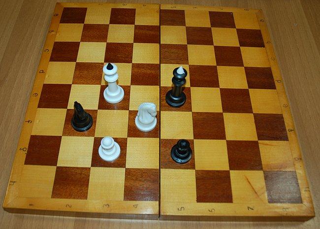 Эротические шахматы и шашки
