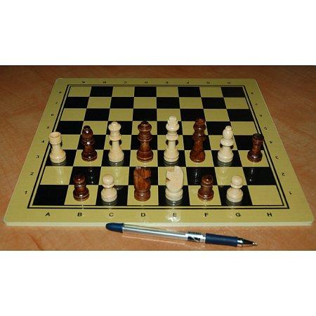 Шахматы Школа, 30 x 30 см (доска МДФ, фигуры дерево)