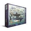 Пазл Eurographics Акулы, 1000 элементов (6000-0079)