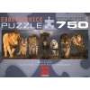 Пазл Eurographics Большие кошки, 750 элементов (6005-0297)