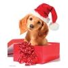 Пазл Eurographics Праздничный щенок, 100 элементов (8104-0670)