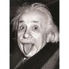 Пазл Eurographics Энштейн, 1000 элементов (6000-1324)
