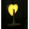 Зеркало косметическое с LED подсветкой и тайником Сердце мятное