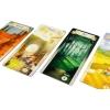 Лес сказок (The Grimm Forest) - настольная игра. Hobby World (915109)