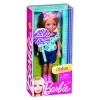 Кукла Челси и друзья в ассорт. Барби (5), Х8400