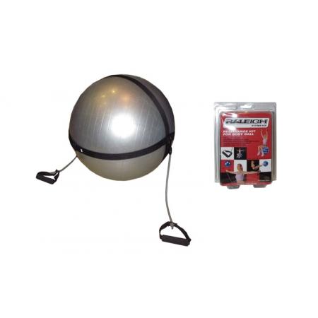 Ремень на фитбол d-75см для крепл.эспандеров FI-0702-75 BODY BALL STRAP (без фитбола) (2эсп.l-118см)