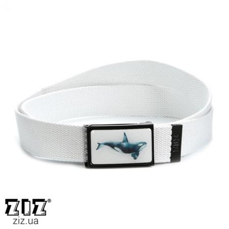 Ремень тканевый Кит, ZIZ-2902902 (черн, бел, хаки, коричн, син, сер)