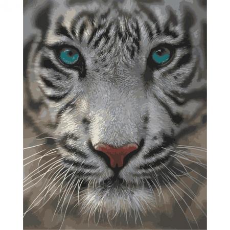Рисование по номерам. Картина серии Животные, птицы 40х50см, Белый тигр, Идейка (MG1004)