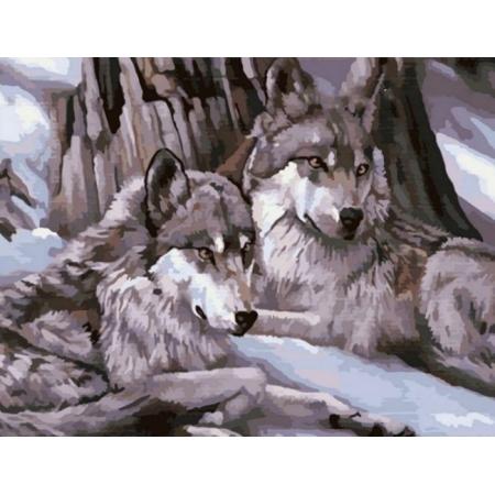 Рисование по номерам. Картина серии Животные, птицы 40х50см, Два волка 2, Идейка (MG1046)
