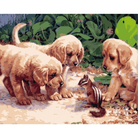 Рисование по номерам. Картина серии Животные, птицы 40х50см, Щенки и бурундучок, Идейка (MG1132)