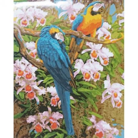 Рисование по номерам. Яркие попугаи, серия Животные, птицы, 40 х 50 см, Идейка, KH1055