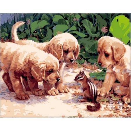 Щеночки и бурундук, серия Животные и птицы, рисование по номерам, 40 х 50 см, Идейка, Щенки и бурундучок (KH1132)